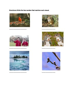 """""""Spring"""" Poem Vocabulary and Activities"""