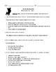 """Stray"" by Cynthia Rylant: Worksheet (or Assessment) with Detailed Answer Key"