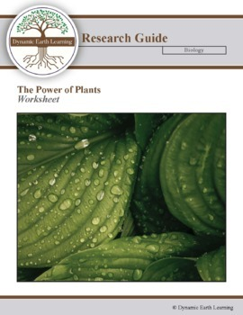 (Sustainability) The Power of plants - Info Graphic Worksheet