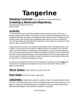 """Tangerine"" Newscast Project"