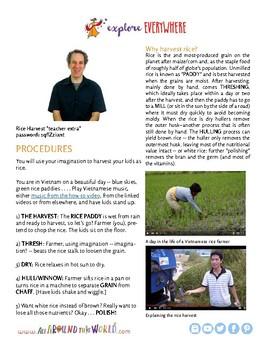 """Teach Kids About Vietnam -- Let's Harvest Rice!"""