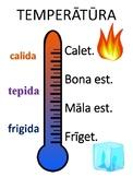 """""""Tempestas"""" Temperature Poster"""