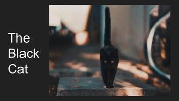 """""""The Black Cat"""" Leveled Reading Lesson Plan (SPED / ESOL)"""