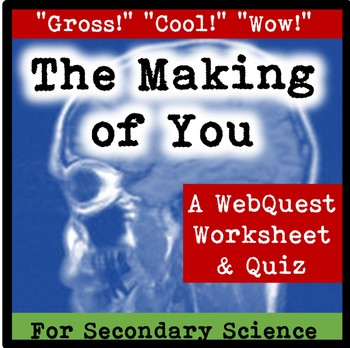 """The Making of You"" Website Worksheet"