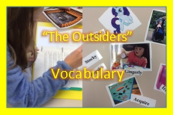 """""""The Outsiders"""" text based vocabulary; enrichment; assessment; Printable"""