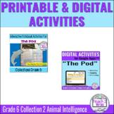 """The Pod"" Printable & Digital Activities Bundle Collection"