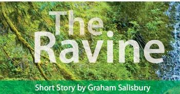 """The Ravine"" by Graham Salisbury: Word/Phrase Splash & Visual Summary Activity"