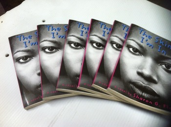 """""""The Skin I'm In"""" books, by Sharon G. Flake - Literature Circle Set"""