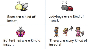 """There Are Many Kinds of Insects"" Guided Reader with a focus on ""are"""