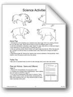 'Three Little Pigs': Science Activities