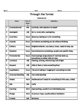"""""""Through the Tunnel"""" Vocabulary Chart"""