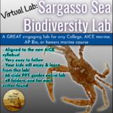[Virtual Lab] APBio / AICE Marine: Sargasso Sea Biodiversi
