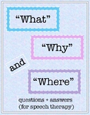 """""""Wh"""" Questions Worksheets"""