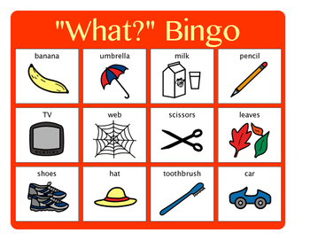 """What?"" Bingo - Answering ""What?"" questions"
