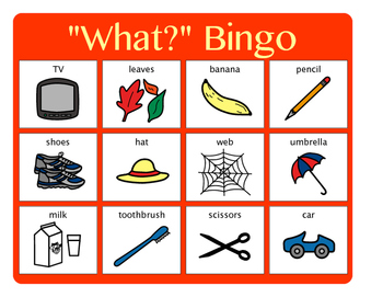 """""""What?"""" Bingo - Answering """"What?"""" questions"""