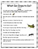 """What Can Insects Do"" Guided Reading Program Work"