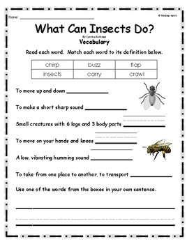 """What Can Insects Do"" Guided Reading Program Activities"