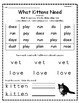 """What Kittens Need"" Guided Reading Program Work"