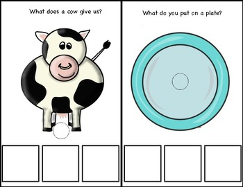 """""""What"""" Question Pack; Interactive book/activities"""