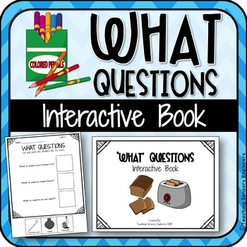 'What' Questions Interactive Book for Students with Autism