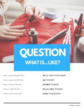 """What is...like"" Pronoun Pattern English (w Korean translation)"