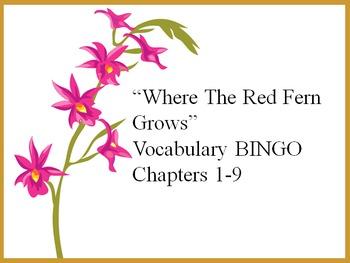 """Where the Red Fern Grows"" Vocabulary BINGO set"