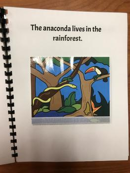 """Who Lives in the Rainforest?"" Flap Book/ Adapted Book"