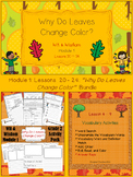"""""""Why Do Leaves Change Color?"""" Bundle - PowerPoint & Activity Packet"""
