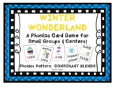 """Winter Wonderland!"" ~ A Winter-Themed CONSONANT BLENDS Ph"