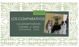 """Zorro y Canela"" Present Series: Comparative Structures Sl"