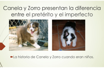 """Zorro y Canela"" Present Series: Preterite and Imperfect Slideshow and Comprehen"