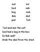 -ad, -ed, -ob, -ab Assessment (WTW Letter Name Sort 29)