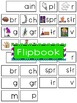 -ain Word Family Flipbook, Word Wall Cards and Data Tracki