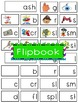 -ash Word Family Flipbook, Word Wall Cards and Data Tracking Sheets!