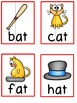 -at Word Family Pack