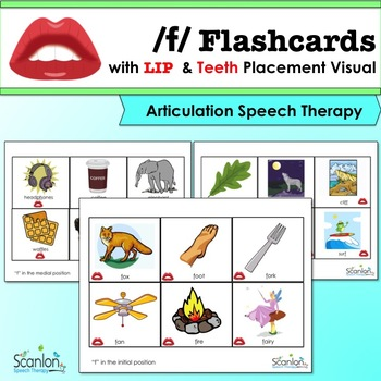23 Laminated Letter R Speech Therapy Flashcards.