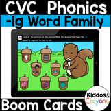 -ig CVC Word Family Short I Phonics