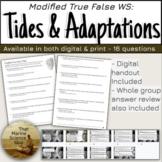 [remote friendly] Modified True False: Tides W.S. for Mari
