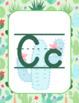 Classroom Decor Watercolor Cactus Alphabet Posters Manuscript