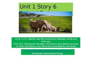 """1st grade story unit 1 story 6 """"Animal Park"""""""