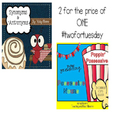 #2fortuesday Possessives and Synonym and Antonyms Bundled