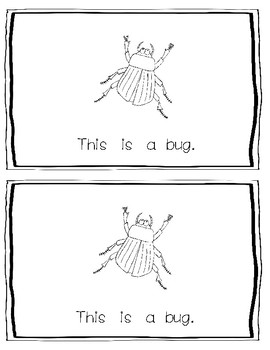 -ug Word Family Emergent Reader:  This is a Bug