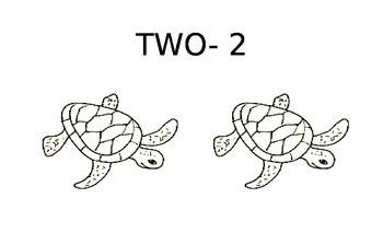 0-10 Number turtles