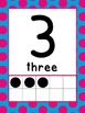 0-20 Ten Frame Number Posters (Blue/pink polka dot)