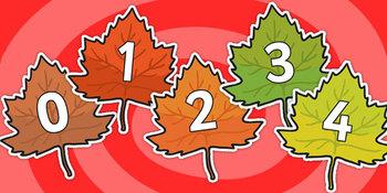 0-20 on Fall Leaves