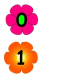 0-20 on flowers