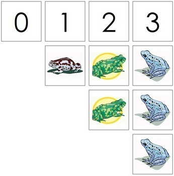 0 to 10 Number Cards and Counters - Frogs