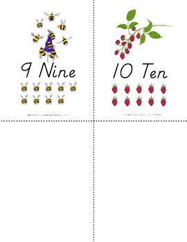 1-10 Number Card Pack {D'Nealian}