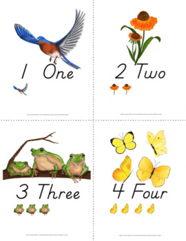 1-10 Number Poster and Card Bundle {D'Nealian}