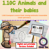 1.10C Animals and their babies